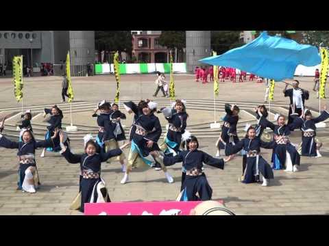 SAKADO WINDS‐零‐ 『青零~Rebom』/ひたち舞祭2016 SPRING