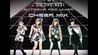 2NE1 - I AM THE BEST CHEER MIX
