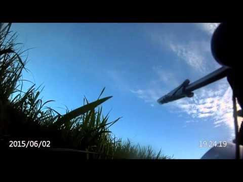 правила подводной охоты в белгородской области