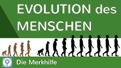 Evolution des Menschen - einfach erklärt! + Wasseraffen- & Savannentheorie | Evolution 25
