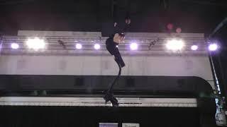 Али Анселла - Catwalk Dance Fest [pole dance, aerial]  30.04.18.
