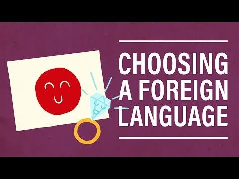 5 Questions: Social Media, Pets, and How to Choose a Foreign Language
