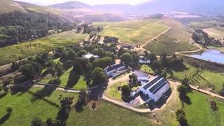 Uitkyk Wine Farm, Distell and Wine farms of the Cape  - Photos of Africa