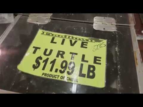 FoodTown Supermarket Davie FL. - Vlog #2
