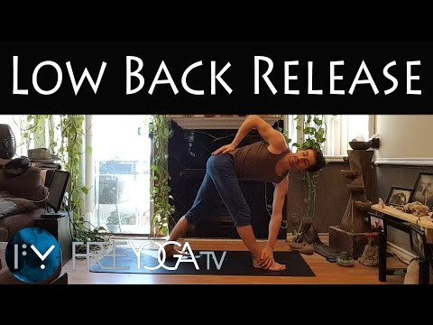 20 min Low Back Pain Relief | Yoga | Stephen Beitler Taha Yoga