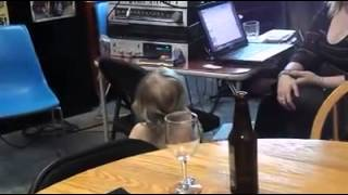 Avalee karaoke 2 / Toddler takes over mic