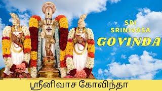 Sri Srinivasa Govinda Sri Venkatesa Govinda   Perumal Songs   Tamil Devotional mp4 songs