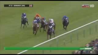 AIR FORCE BLUE - NEWMARKET - THE DUBAI DEWHURST STAKES