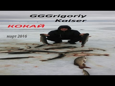 рыбалка на озере щучьем в казахстане