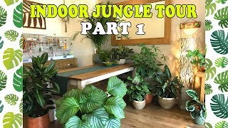 Welcome to the Jungle! Indoor Jungle Tour UK PART 1