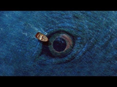 15 ყველაზე დიდი არსება დედამიწაზე (ვიდეო)