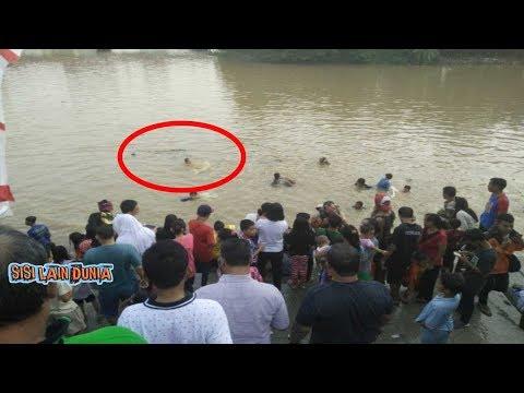 Warga Heboh, Ikan  Raksasa ini Muncul di Sungai bengawan solo !!