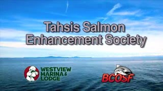 Tahsis Salmon Enhancement 2015