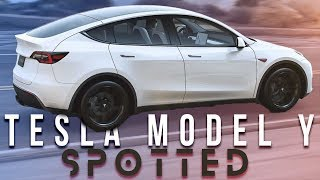 tesla Model Y SPOTTED AND Rumors About the Tesla Pickup Truck Coming in October?!