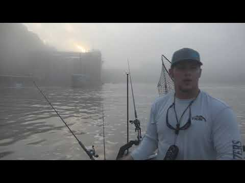 Giant Melton Hill Stripers with Tennessee River Monsters