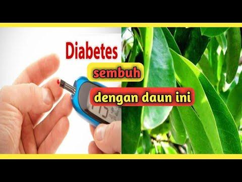 obat-diabetes-alami-paling-ampuh