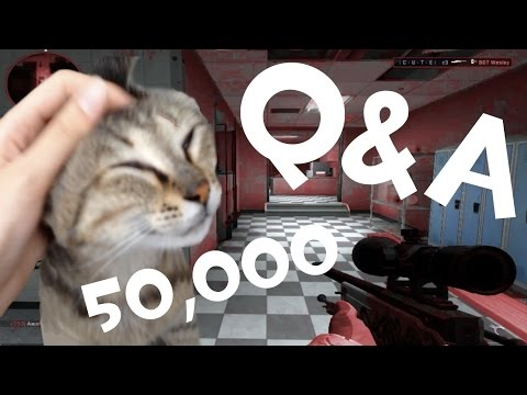[50K Special - Q&A] Ft. CuteC3, Cats and 360noscope :3