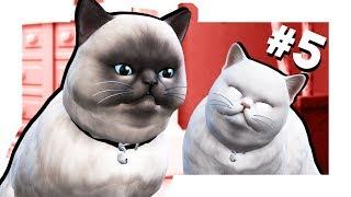 The Sims 4 Кошки и собаки #5 Скоро будут котята?