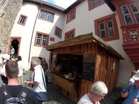 tour ronneburg castle with a dog