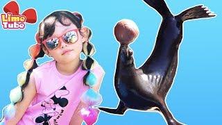 [세계여행]라임의 무지개 머리하고 씨월드에서 동물친구들과 놀기| 라임패밀리 미국 어디까지 가봤니 2편 그랜드캐년 LimeTube toy review