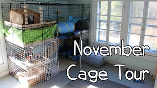 November Rabbit Cage Tour-2014