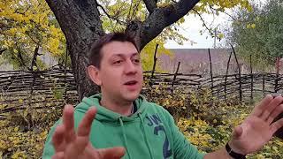 Выводы после выступления с квартетом Константина Колесниченко. Урок № 33.