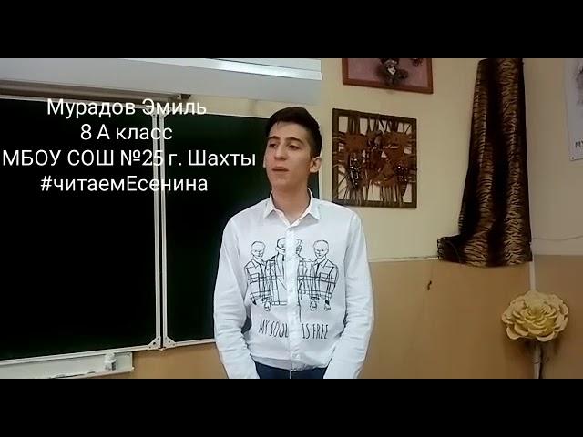 Изображение предпросмотра прочтения – ЭмильМурадов читает произведение «Не гляди на меня с упреком» С.А.Есенина