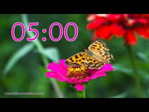 5 Minute Butterfly Timer ? Relaxing Nature Spring Sound ♬