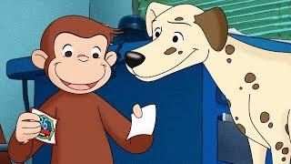 Jorge el Curioso en Español ¿Dónde está el Perro Bombero  Capitulos completos del Mono Jorge