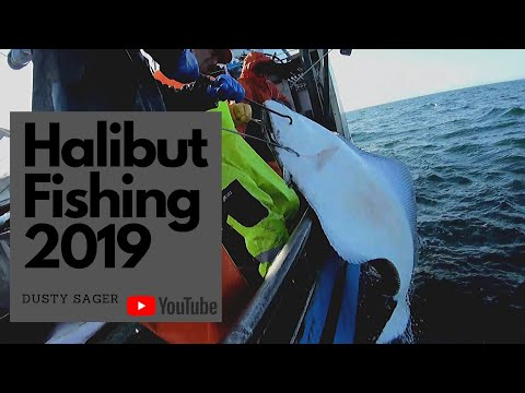 Fishing Alaskan Halibut - Commercial Halibut