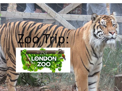 London Zoo Trip September 2016!