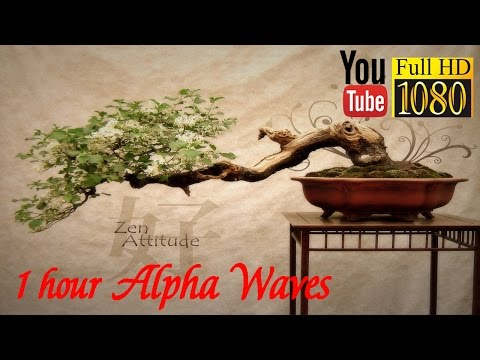 HD  🌅 Alpha Waves 🌅 Chi / Qi Energy 🌅  Reiki, Yoga, Qigong, Zen Music 🌅 Relax Day and Night