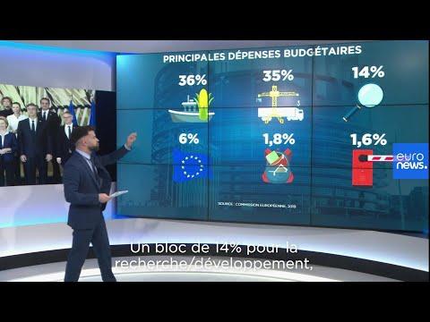 Budget Européen : Quels Pays Paient Le Plus Et Où Vont Les Fonds ?
