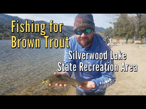 Fishing for Brown Trout at Silverwood Lake