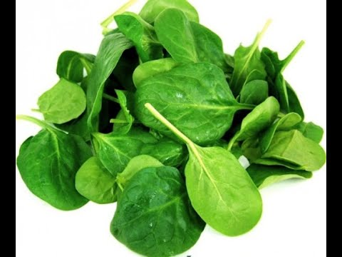 Vegetable name- Spinach