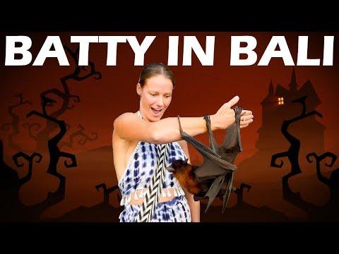 Batty in Bali & Amazing 4k Drone- Sailing Vlog 123