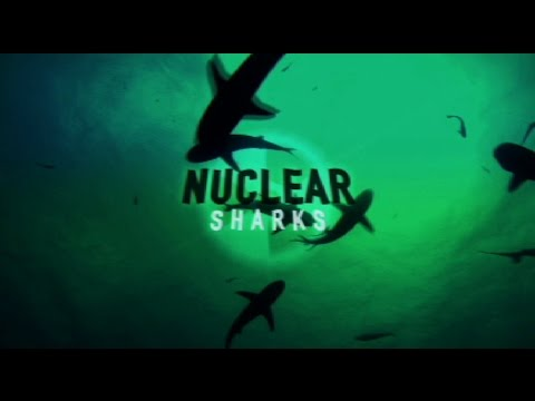Discovery: Nuclear Sharks - YouTube