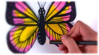 How to draw a butterfly / Easy drawing with Sharpie / Satisfying Art #32