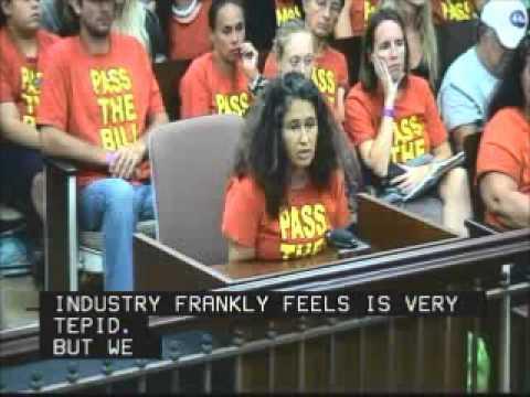 Felicia Alongi Cowden Testifies Kauai County Council Sept  27, 2013