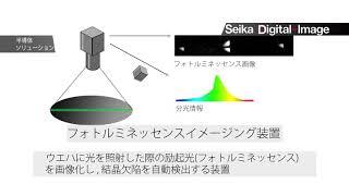 フォトルミネッセンスイメージング測定装置