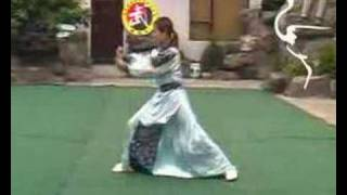 Repeat youtube video Shaolin Taizu Chang Quan 少林太祖長拳 32 postures set
