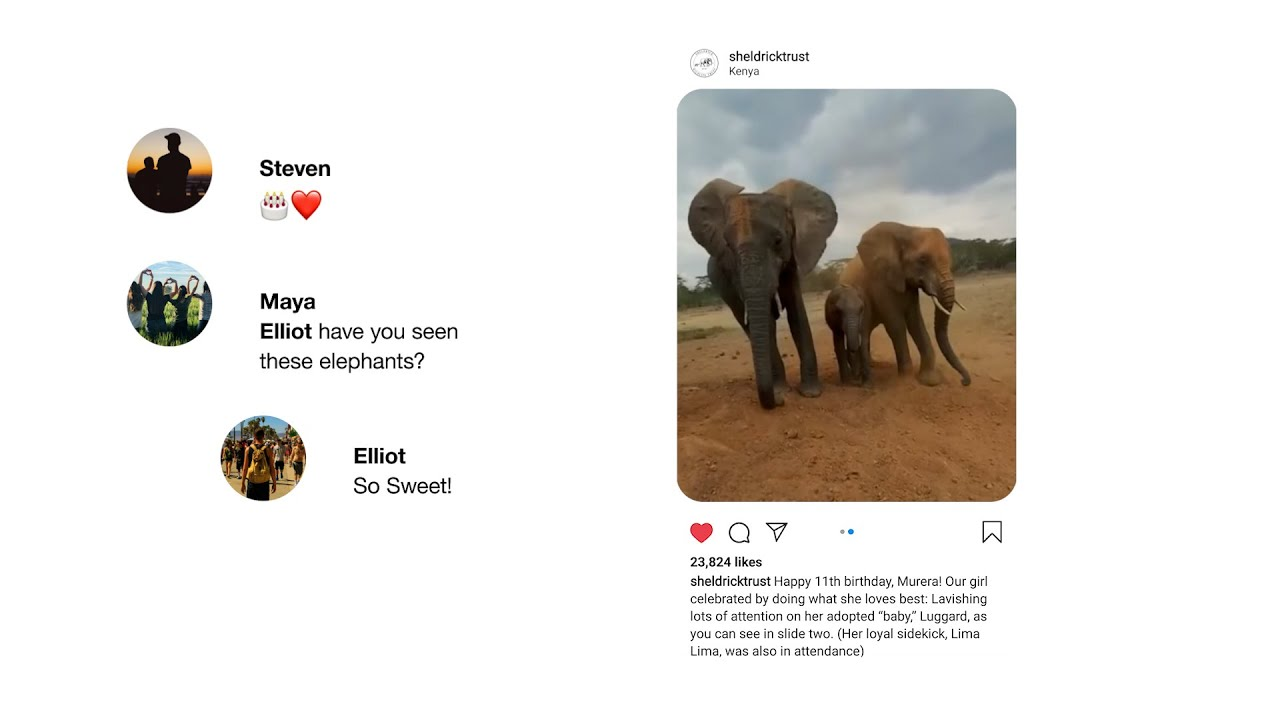 Sheldrick Wildlife Trust - Instagram - Community Voices