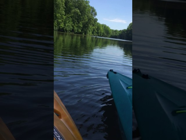 Fishing On The Field And Stream Charge Kayak