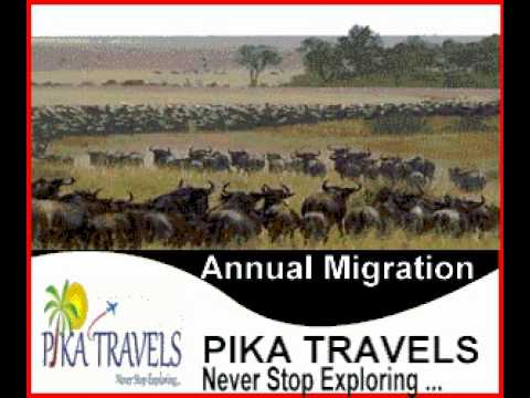 East Africa Tours By PIKA TRAVELS