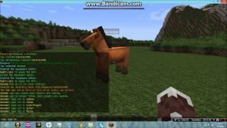 Minecraft Plugin Tanıtımı #1 -- Citizens Türkçe 1.7.2 (npc konuşturma) Thumbnail