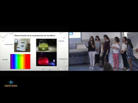 Biology group. Phytoplankton: Ocean\'s green engine