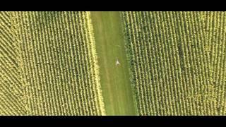 Transcendence - Short Film - Drone Demo