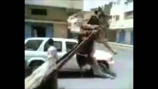 El burro y la carreta que lo levanta