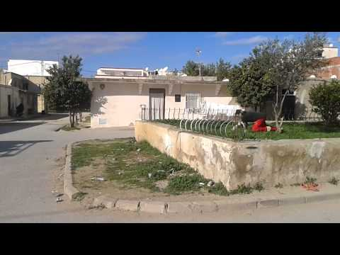 Parkour-Tunis (Grombalia) 2014 [part/ 4] =)