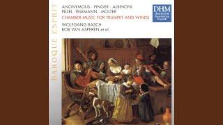 Sonata for Trumpet, Oboe & Basso continuo in C major: Grave - (Allegro)